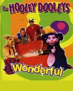 Wonderful Cassette Cover