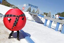 Winter balls.jpeg
