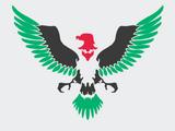 Palestinian Air Force