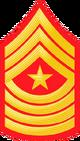 E9b USMC SM.png