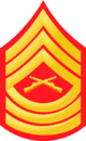 E8a USMC MSGT.png