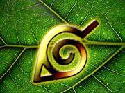 Leaf Symbol.jpeg