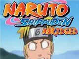 Naruto Shippuden Abridged (TeamNinjaStar)