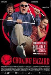Choking Hazard poster.jpg