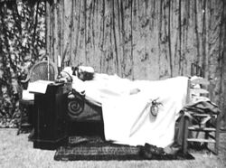 A Terrible Night (1896).jpg