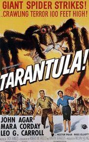 Tarantula (1955) poster.jpg