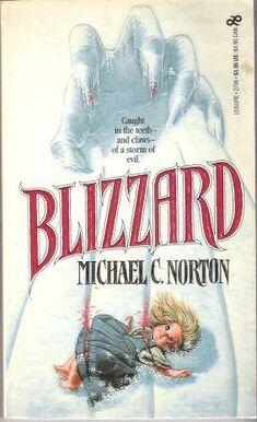 Blizzard michael norton leisure.jpg