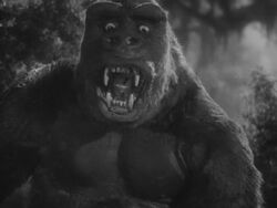 King Kong.jpg