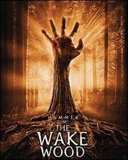 Wake Wood poster.jpg