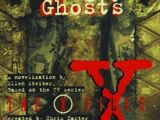 The X-Files: Hungry Ghosts