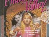 Stranger in the Mirror (Phantom Valley)