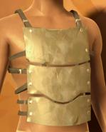 Silan Chest Armor
