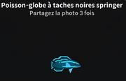Poisson-globe à taches noires springer-0.png