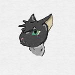 Vipére des ailes de sable's avatar