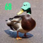Quaccanthrope's avatar