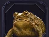 Familiar - Toad