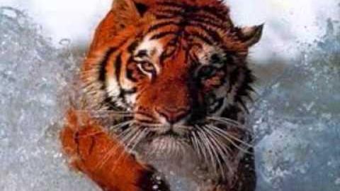 Animales_en_peligro_de_extinción