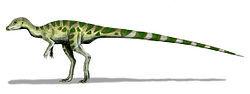 250px-Leaellynasaura BW.jpg