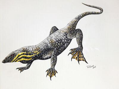 Thadeosaurus.jpg
