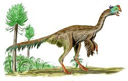 250px-Gigantoraptor BW.jpg