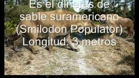 Los animales más grandes del mundo 1 mamíferos