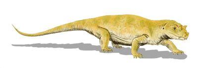 Tetraceratops.jpg