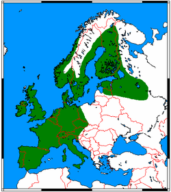 250px-Erinaceus europaeus range map.png