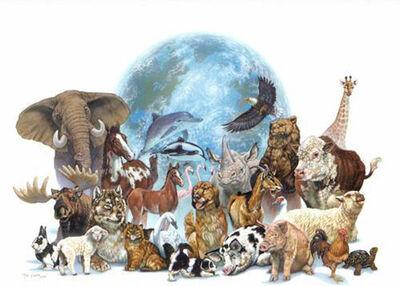 Animales-en-peligro-de-extincion.jpg