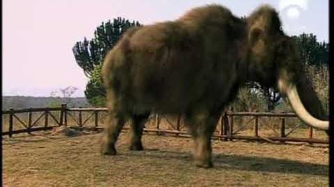 Parque Prehistórico - Capítulo 2 6 - Los Mamuts 5 5