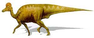 1237314814 254 coritosaurio.jpg