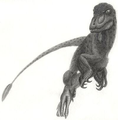 Pyroraptor olympius.jpg