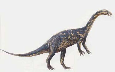 Gyposaurus-uua.jpg