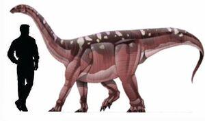 Blikanasaurus.jpg