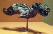 Thrinaxodon Lionhinus.jpg