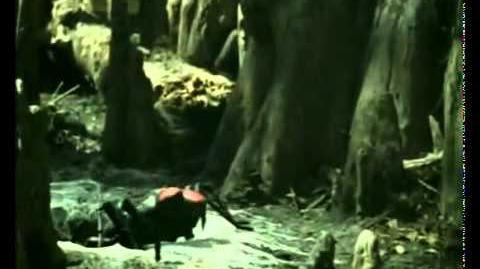 Caminando Entre Monstruos Vida Antes de los Dinosaurios (5)