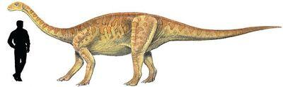 Yunnanosaurus.jpg