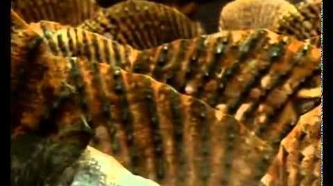 Caminando Entre Monstruos Vida Antes de los Dinosaurios (7)
