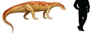 Anchisaurus.jpg