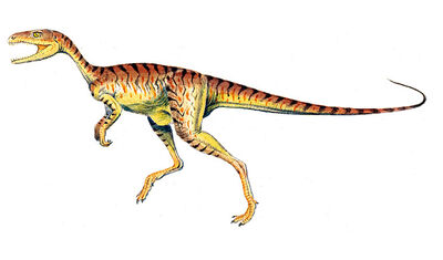 Chindesaurus.jpg