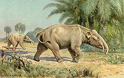 250px-Paleomastodon.jpg