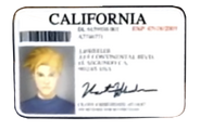Vert Driver License