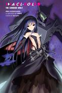 Accel World Light Novel Volume 11 - Colour Insert