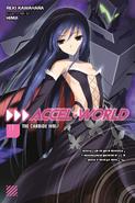 Accel World Light Novel Volume 11 Cover