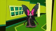 Neigenoire-papillon