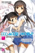 Accel World Light Novel Volume 18 - English Cover
