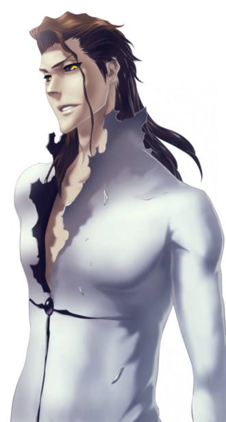 Aizen Second Stage.png