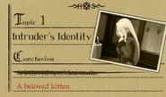 Herlock kitten