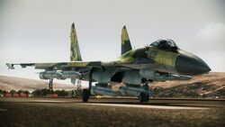 Acah-su-35-011-jpg.jpg