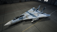 F-14D AC7 Color 2 Hangar