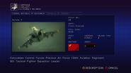 Irena Assault Record AC6